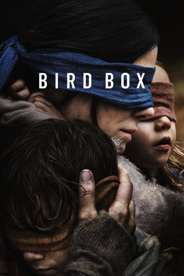 BIRD BOX-a Six Star Rating on this one!