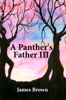APanther'sFatherIIIBookCoverFront